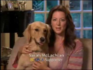 """Hi, I'm Sarah McLachlan, and I'm here to totally bum you out and make you cry even though all you wanted to do was  watch a Seinfeld rerun and not be reminded that the world is a horrible place."""