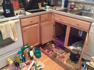 Just thinking about my kitchen being in such disarray for more than a day makes me break out in hives.